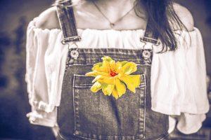 flower-1770516_1280
